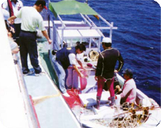 Cracking down on illegal fishing using poison electricity or explosives